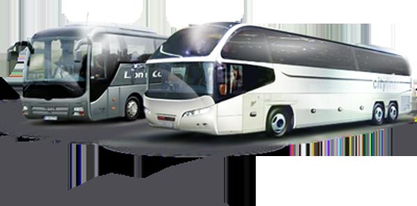 formula_uspeha_bus